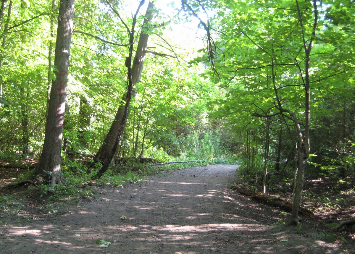 Harmony Creek Dog Park