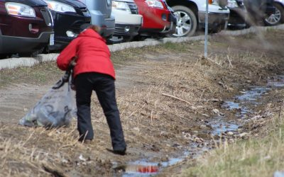 Spring Membership and Park Clean Up